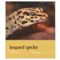 Leopard Gecko - Pet Expert