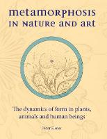 Metamorphosis in Nature and Art: The dynamics of form in plants, animals and human beings - Art and Science (Hardback)