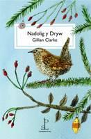 Nadolig y Dryw (Paperback)