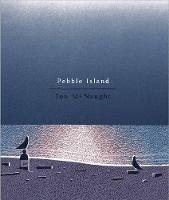 Pebble Island (Hardback)