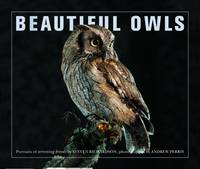 Beautiful Owls: Portraits of Arresting Species from Around the World (Paperback)