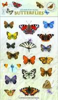Butterflies - Sticker Play Scenes 2