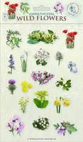 Wild Flowers - Sticker Play Scenes 3