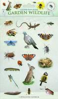Garden Wildlife - Sticker Play Scenes 4