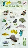 Ponds & Rivers - Sticker Play Scenes 7
