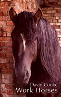 Work Horses (Paperback)