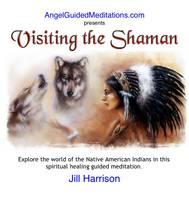 Visiting the Shaman (CD-Audio)