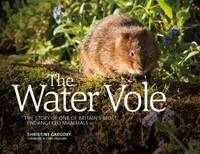The Water Vole: The Story of One of Britain's Most Endangered Mammals (Paperback)