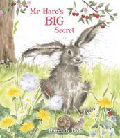 Mr Hare's Big Secret (Hardback)