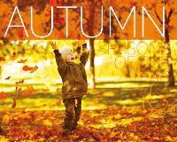 Autumn - Seasons of the Year (Hardback)