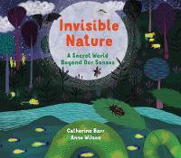Invisible Nature: A Secret World Beyond our Senses (Hardback)