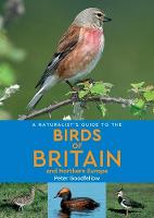 A Naturalist's Guide to the Birds of Britain and Northern Europe (2nd edition) - Naturalist's Guide (Paperback)