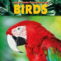 Birds - Living Things and Their Habitats (Paperback)