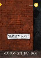 Cyfres Amdani: Stryd y Bont (Paperback)