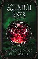 Soulwitch Rises - The Magelands Epic 7 (Paperback)