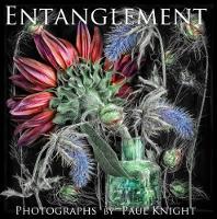 Entanglement (Hardback)