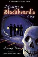 Mystery at Blackbeard's Cove (Paperback)