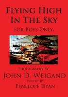 Flying High In The Sky---For Boys Only (Paperback)