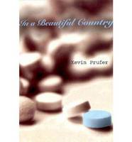 In a Beautiful Country (Paperback)
