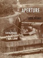Aperture - New Polish Writing (Paperback)