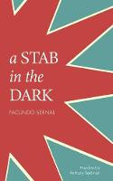 A Stab in the Dark - LARB Classics (Paperback)