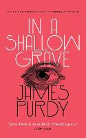 In a Shallow Grave (Valancourt 20th Century Classics) (Paperback)