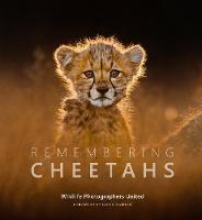 Remembering Cheetahs - Remembering Wildlife 5 (Hardback)