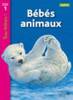 Tous lecteurs!: Bebes animaux (Paperback)