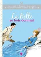 Un petit livre d'argent...: La Belle au bois dormant (Paperback)