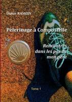 Pelerinage a Compostelle: Rencontres dans les pas de mon pere (Paperback)