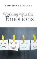 Working With the Emotions (Paperback)