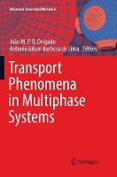 Transport Phenomena in Multiphase Systems - Advanced Structured Materials 93 (Paperback)
