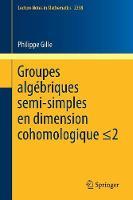 Groupes Alg briques Semi-Simples En Dimension Cohomologique: Semisimple Algebraic Groups in Cohomological Dimension - Lecture Notes in Mathematics 2238 (Paperback)
