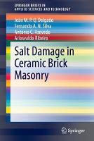 Salt Damage in Ceramic Brick Masonry - SpringerBriefs in Applied Sciences and Technology (Paperback)