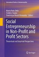 Social Entrepreneurship in Non-Profit and Profit Sectors: Theoretical and Empirical Perspectives - International Studies in Entrepreneurship 36 (Hardback)