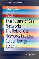The Future of Gas Networks in Low Carbon Energy Systems - SpringerBriefs in Energy (Paperback)