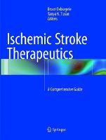 Ischemic Stroke Therapeutics: A Comprehensive Guide (Paperback)