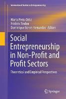 Social Entrepreneurship in Non-Profit and Profit Sectors: Theoretical and Empirical Perspectives - International Studies in Entrepreneurship 36 (Paperback)