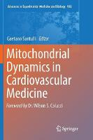 Mitochondrial Dynamics in Cardiovascular Medicine - Advances in Experimental Medicine and Biology 982 (Paperback)