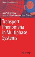 Transport Phenomena in Multiphase Systems - Advanced Structured Materials 93 (Hardback)