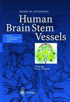 Human Brain Stem Vessels: Including the Pineal Gland and Information on Brain Stem Infarction (Hardback)