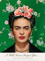 I Will Never Forget You...: Frida Kahlo to Nicholas Muray; Unpublished Photographs and Letters (Paperback)