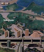 Sean Snyder (Paperback)