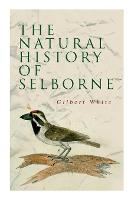 The Natural History of Selborne (Paperback)