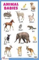 Animal Babies Educational Chart (Poster)