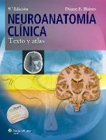 Neuroanatomia clinica: Texto y atlas (Paperback)