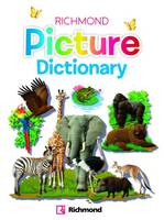 Richmond Picture Dictionary Book