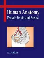 Human Anatomy : Female Pelvis and Breast