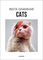 Insta Grammar: Cats (Hardback)