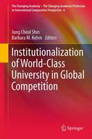 Institutionalization of World-Class University in Global Competition - The Changing Academy - The Changing Academic Profession in International Comparative Perspective 6 (Paperback)